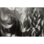 ZANGA sál a homokban alumínium falikép, 140x60 cm